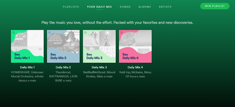 Personalized Website Experience Spotify